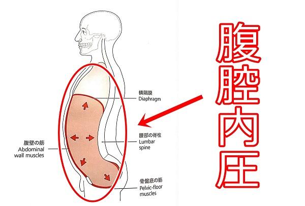 腹腔内圧3